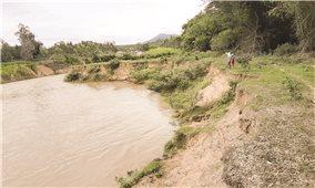 Nhà máy thủy điện Tiên Thuận gây sạt lở đất sản xuất: Cần được xử lý dứt điểm
