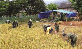 Bộ đội biên phòng Quảng Bình: Cùng đồng bào xây dựng cuộc sống mới