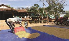 Gia Lai: Nỗ lực giảm nghèo vùng đặc biệt khó khăn