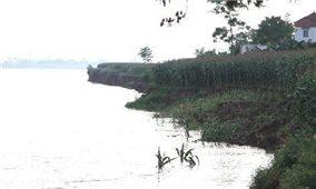 Chủ động ứng phó với mưa lũ, đặc biệt là lũ cao trên sông Thao