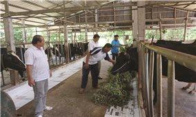 Huyện Mỹ Xuyên (Sóc Trăng): Nâng cao chất lượng xây dựng nông thôn mới
