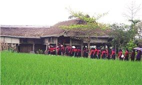 Người Cao Lan giữ nếp nhà truyền thống