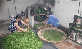 Thanh Hóa: Xã 135 sở hữu 2 sản phẩm OCOP