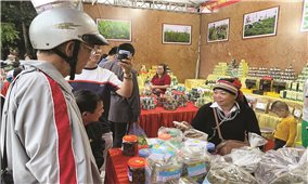 Các sản phẩm OCOP Hà Giang: Sức hút nhìn từ một triển lãm