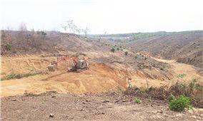 Đồng Nai: Phá rừng làm dự án khu dân cư - Vi phạm đã rõ, bao giờ xử lý? (Bài 2)