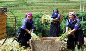 Một số kết quả chương trình mục tiêu quốc gia giảm nghèo bền vững giai đoạn 2016 - 2020
