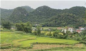 Hà Quảng (Cao Bằng): Nguồn vốn hỗ trợ sản xuất giúp đồng bào cải thiện cuộc sống