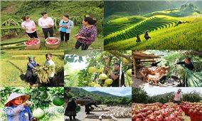 Ngân hàng chính sách xã hội Việt Nam: Thành quả quan trọng trong từng giai đoạn phát triển