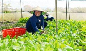 """Quảng Bình: Người dân có """"cần câu"""" nhờ học nghề nông nghiệp"""