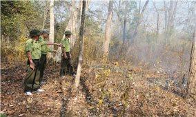 Tây Nguyên: Thực hiện các biện pháp khẩn cấp phòng chống cháy rừng
