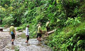 Nhân lực giữ rừng- Chuyện dài chưa có hồi kết: Áp lực cho những người ở lại (Bài 2)