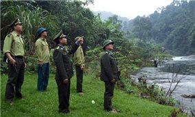 Nhân lực giữ rừng- Chuyện dài chưa có hồi kết: Người đến thì ít, người đi lại nhiều! (Bài 1)