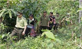 """Yên Bái: Trao """"chìa khóa"""" bảo vệ rừng cho người dân"""