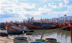 Quảng Bình: Lên phương án di dời hơn 29.000 hộ dân đến nơi an toàn để tránh bão
