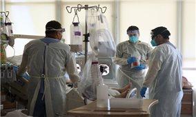 Thế giới có gần 1,84 triệu ca tử vong vì COVID-19