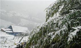 Miền Bắc chuẩn bị đón đợt rét hại, khả năng xuất hiện mưa tuyết, băng giá