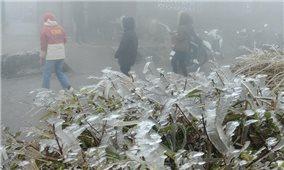 Ngày 9/1: Bắc Bộ, Trung Bộ rét hại, vùng núi cao có khả năng xảy ra mưa tuyết, băng giá