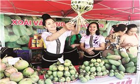 Sơn La - Một hiện tượng kinh tế nông nghiệp