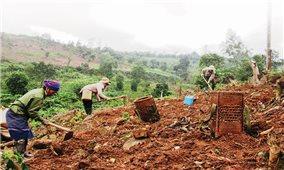 Đất sản xuất và quyền sinh kế