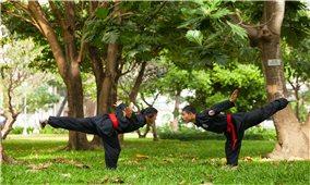 Võ lâm Tân Khánh Bà Trà được công nhận là Di sản văn hóa phi vật thể quốc gia