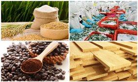 Hai tháng đầu năm, xuất khẩu nông, lâm, thủy sản đạt 6,17 tỷ USD