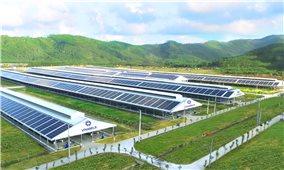 Vinamilk đầu tư hệ thống năng lượng mặt trời tới tất cả các trang trại bò sữa