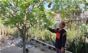 Già làng, Người có uy tín Ksor Ry giỏi công tác dân vận