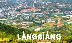 Lâm Đồng tạm thời cho thuê môi trường rừng để kinh doanh du lịch sinh thái