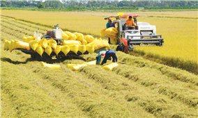 Bảo đảm an ninh lương thực quốc gia đến năm 2030