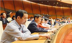 Kỳ họp thứ 11, Quốc hội Khóa XIV: Thông qua Luật Phòng, chống ma túy (sửa đổi)