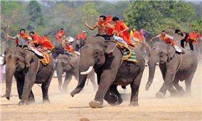 Lễ hội đua voi ở Buôn Đôn