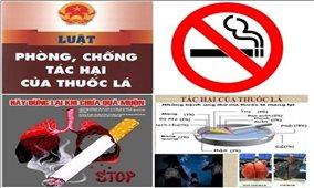 Tăng cường thực thi Luật Phòng, chống tác hại của thuốc lá và hưởng ứng Ngày Thế giới không thuốc lá