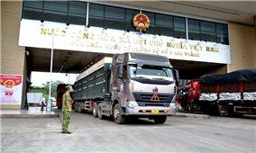 Lào Cai: Tạo điều kiện ưu tiên xuất khẩu nông sản trong bối cảnh dịch Covid-19