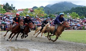 Lễ hội đua ngựa truyền thống huyện Bắc Hà được đưa vào danh mục văn hóa phi vật thể quốc gia
