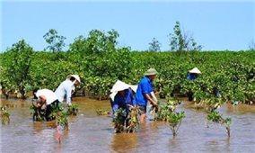 Khẳng định đóng góp có trách nhiệm của Việt Nam trong ứng phó với biến đổi khí hậu