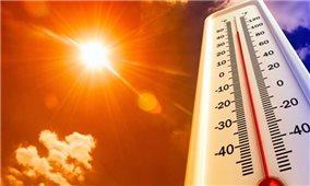 Các bệnh thường gặp khi thời tiết nắng nóng và cách phòng tránh