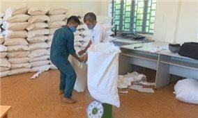Quảng Trị được hỗ trợ 819,15 tấn gạo