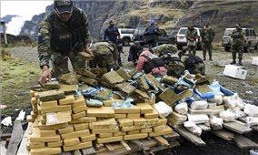 Chống tin giả để xây dựng 'thế giới không có ma túy'