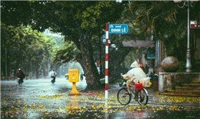 Thời tiết ngày 19/7: Bắc Bộ và Thanh Hóa có mưa to và dông