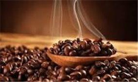 Giá cà phê hôm nay 24/7: Thị trường trong nước giảm 800 đồng/kg