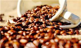 Giá cà phê hôm nay 27/7: Thị trường trong nước vượt 38.000 đồng/kg