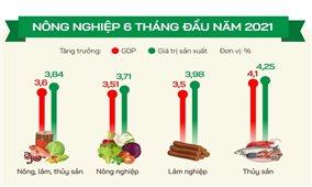 Xuất khẩu nông sản 6 tháng đầu năm đạt hơn 24 tỷ USD