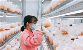 Chuyển hướng tư duy trong làm khoa học nông nghiệp