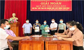 Lào Cai: Giải ngân 700 triệu đồng cho 14 hộ dân tham gia Dự án