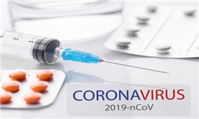 Đảm bảo cung ứng, bình ổn giá thuốc phòng, chống COVID-19