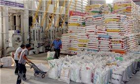 Xuất cấp gạo hỗ trợ người dân gặp khó khăn do dịch Covid-19