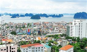 Quy hoạch Quảng Ninh trở thành động lực phát triển kinh tế của cả nước