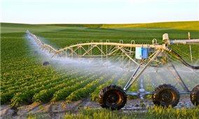 5 xu hướng nông nghiệp toàn cầu năm 2021