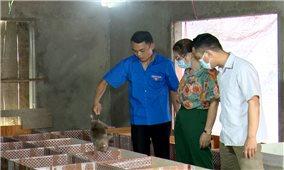 Bàn Văn Hoàng khởi nghiệp nơi đất khó