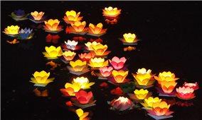 Giáo hội Phật giáo Việt Nam đề nghị các chùa nhận miễn phí hũ tro cốt, lập đàn cầu siêu cho người tử vong vì Covid-19
